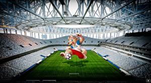 Фотография Футбол Стадион World Cup 2018 Mascotte