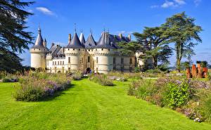 Фотографии Франция Замки Газон Кусты Chaumont-sur-Loire castle