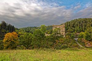 Фотографии Германия Замки Развалины Лес Трава Burg Balduinstein Природа