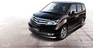 Картинки Хонда Черный Elysion Авто