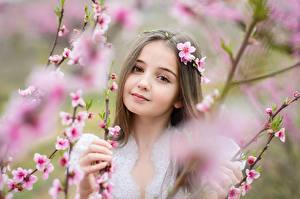 Фотография Девочки Смотрит Ветка Лицо Милые ребёнок