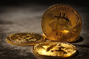 Картинки Деньги Монеты Bitcoin
