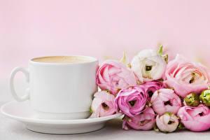 Фотография Лютик Кофе Чашка Цветы Еда
