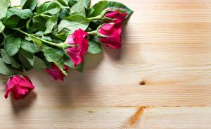 Картинка Розы Вблизи Доски Красный