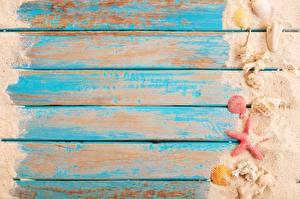 Фото Ракушки Морские звезды Доски Шаблон поздравительной открытки Песок