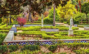Обои Испания Парки Скульптуры Дизайн Кусты Maria Luisa Park Sevilla Природа
