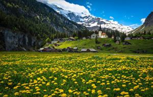 Фотография Швейцария Здания Горы Одуванчики Urnerboden Города