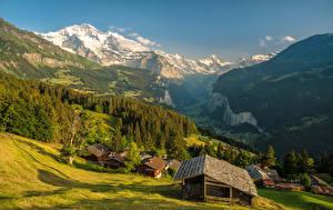 Фотографии Швейцария Горы Здания Леса Деревня Каньон Wengen Города