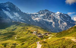 Обои Швейцария Горы Здания Дороги Альпы Мох Grindelwald Wengen Природа