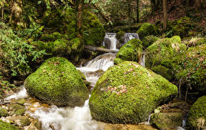 Фото Швейцария Водопады Камень Мох Zug