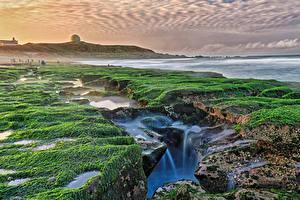 Обои Тайвань Берег Водопады Мох Природа