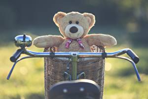 Фотография Плюшевый мишка Велосипедный руль Корзина