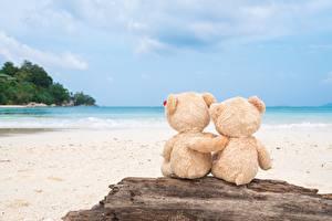 Обои Плюшевый мишка Море Любовь Объятие Природа