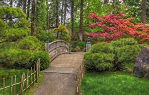 Фото США Сады Мосты Вашингтон Кусты Деревья Трава Japanese Garden Spokane