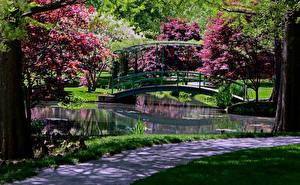 Обои Штаты Сады Пруд Мосты Деревья Gibbs Gardens