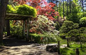 Фото Штаты Сады Пруд Вашингтон Кусты Деревья Spokane Japanese Garden