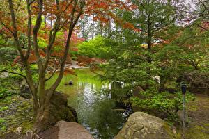 Картинки Штаты Сады Пруд Камень Вашингтон Деревья Spokane Japanese Garden