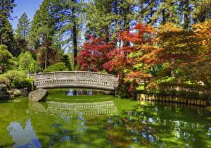 Фотография Америка Парк Пруд Мосты Камни Вашингтон HDRI Дерева Japanese Garden Spokane Природа