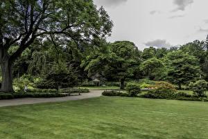 Фотография Великобритания Парки Газон Деревья Кусты Garden Harlow Carr