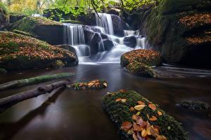 Фото Водопады Осень Франция Мох Brittany, Saint-Herbot Природа