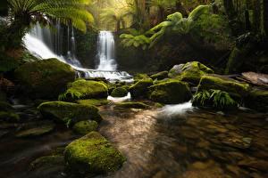 Обои Водопады Камень Мох Ручей Tasmania