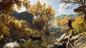 Обои Assassin's Creed Лоси Лучники Охота Odyssey Игры Природа