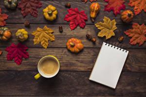 Фото Осенние Тыква Кофе Доски Листья Чашка Блокнот Еда