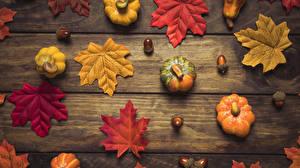 Картинки Осень Тыква Листва Природа