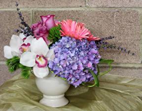 Картинки Букеты Орхидеи Гортензия Розы