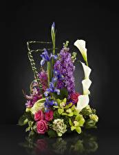 Обои Букеты Розы Орхидеи Белокрыльник Ирисы Маттиола