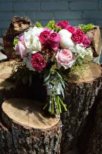 Обои Букеты Розы Бревна Цветы