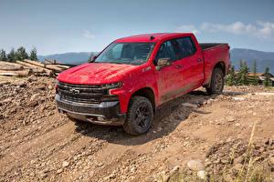Фотография Chevrolet Пикап кузов Красный Металлик 2019 Silverado LT Z71 Trailboss Crew Cab Автомобили