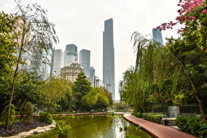 Картинки Китай Дома Пруд Дерево Guangzhou город