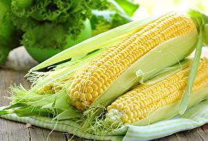 Фотографии Кукуруза Крупным планом Пища