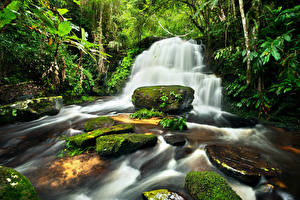 Картинка Леса Водопады Камень Мох Природа