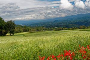 Картинки Япония Пейзаж Поля Холмы Колос Nagano Природа