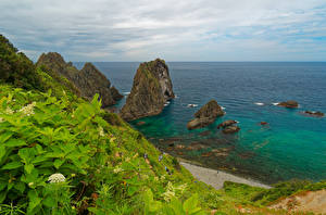 Фотография Япония Море Берег Скала Hokkaido Природа