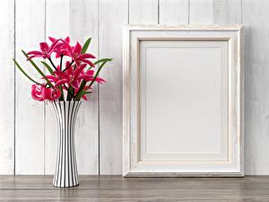 Фотография Лилии Стена Ваза Розовый Цветы