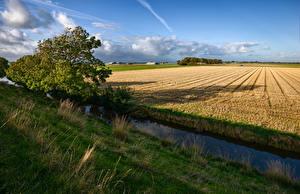 Фото Нидерланды Поля Водный канал Природа