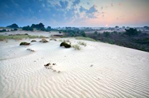 Фото Нидерланды Парки Рассветы и закаты Песок Drents-Friese Wold National Park