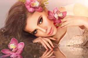 Фотография Орхидеи Шатенка Лицо Смотрит Волосы Девушки