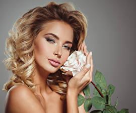 Обои Розы Блондинка Лицо Смотрит Руки Девушки