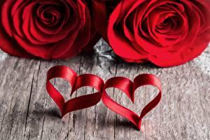 Картинка Розы Сердце Вдвоем Красный Цветы