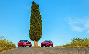 Фотографии Skoda Вдвоем Красный Металлик 2017 Octavia Автомобили