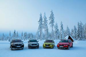 Картинка Шкода Снег Металлик Superb, Kodiaq, Octavia, Karoq Машины