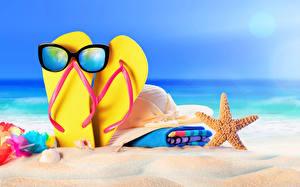 Фотография Лето Берег Полотенце Морские звезды Песок Сланцы Очки Шляпа