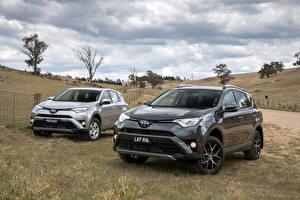Картинка Toyota Двое Металлик Серый 2015-18 RAV4 Авто