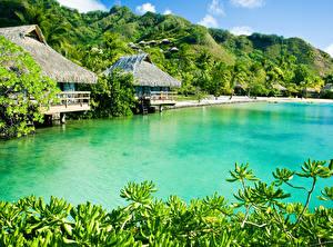 Фотографии Тропики Здания Берег Холмы Caribbean Природа