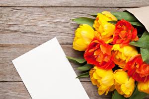 Картинка Тюльпаны Доски Шаблон поздравительной открытки Лист бумаги Цветы