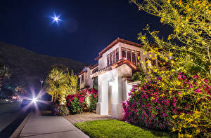 Обои США Дома Калифорния Анахайм Улица Ночь Лучи света Кусты Луна Города